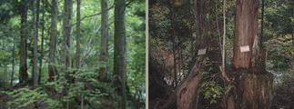 檜の里ツアー
